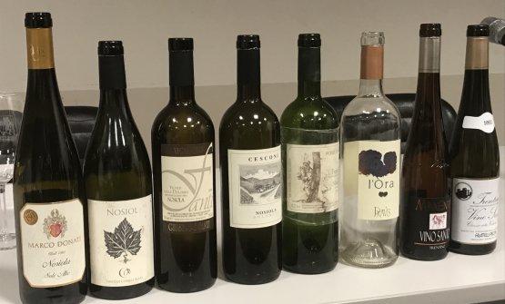 I vini presentati durante la degustazione