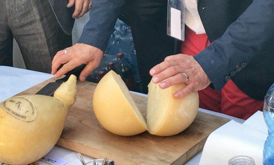 """Con un simbolico """"taglio della Provola"""", da parte del presidente del Consorzio, Piero Valenti, è stato inagurato il primo Nebrodi Cheese Festival"""