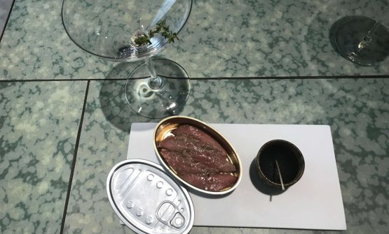 Pigeon / Anchovy: the pigeon fillet is left to macerate in anchovy water. The result is exceptional