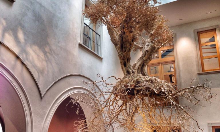 L'opera d'arte di Adam Lowe, che ha ricoperto di bronzo un ulivo secolare, � il simbolo del nuovo Mercato del Duomo di Autogrill. Lo spazio, che si sviluppa all'interno di quello che dal 1928 � stato il Bar Motta, contiene un Bistrot, un Mercato, il Bar, la Terrazza Aperol e, dalla seconda met� di maggio, Spazio Milano di Niko Romito