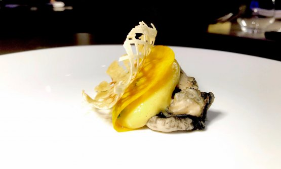 Oyster, egg yolk and rice brittle