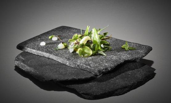 Insalata in verde dalle Apuane: il piatto del 2