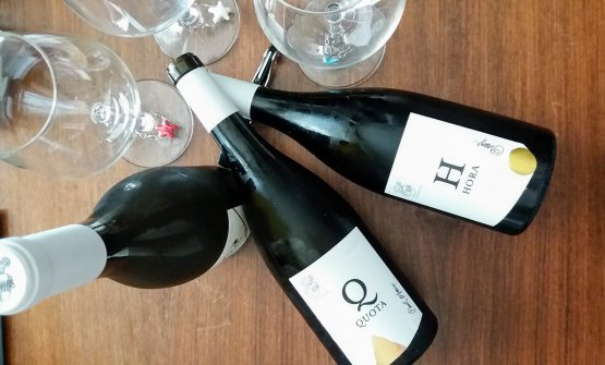 I tre vini della nuova lineaInsolitus di Abbazia