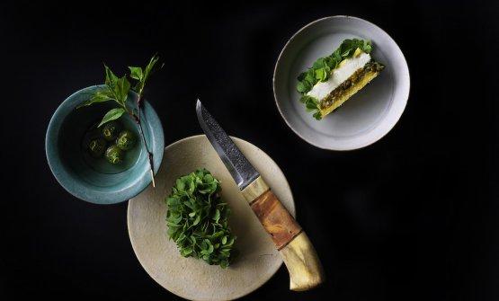 Torta al latte di soia, acetosella e kiwi selvatici