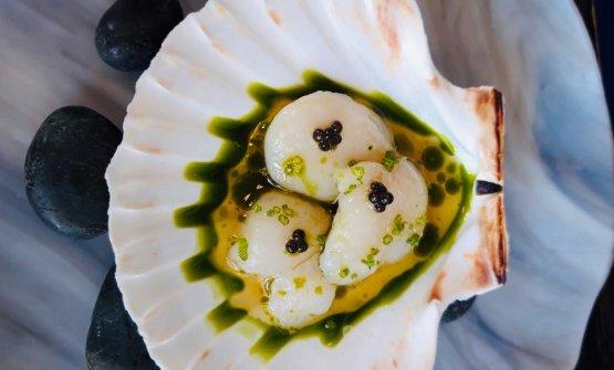 Cappasanta, caviale, aneto e infuso di cetrioli secchi