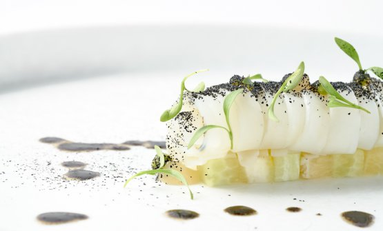Tagliatellina di seppia con cetriolo, avocado e limone di Amalfi salato