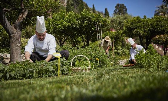 Lo chef Roberto Toro nell'orto del Timeo