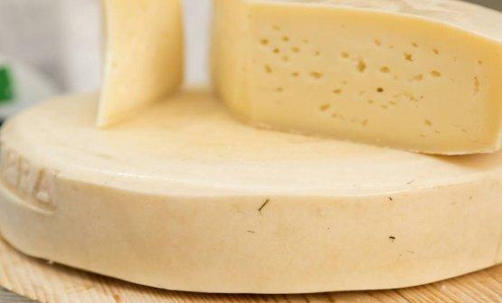 Il formaggio di latteria turnaria delle valli gemo