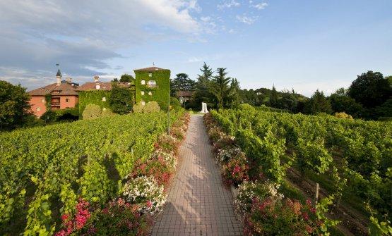L'Andana e L'Albereta riaprono: il resort in Toscana dal 12 giugno, quello in Franciacorta dal 19