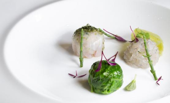 Lattughine di mare in brodo di cappone è il piatto 2017 di Marco Visciola, chef de Il Marin all'Eataly di Genova (foto di Francesco Zoppi)