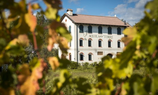 L'azienda si trova nei Colli Orientali del Friuli