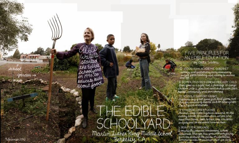 """Alice Waters ha inaugurato il suo progetto di educazione alimentare nelle scuole, Edible Schoolyard (letteralmente """"cortile scolastico commestibile""""), nel 1996"""