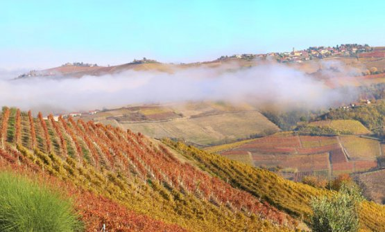 A view of the Langhe