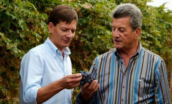 Luciano e Giancarlo Begnoni in vigna