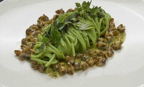 Spaghetti di Kamut alle erbe con lumachine di mare