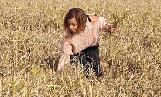 Maria Praino nella risaia