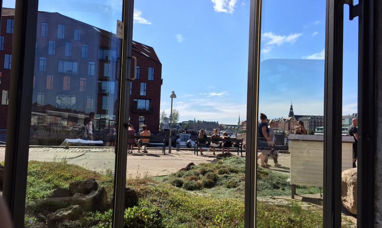 Un'immagine dello spazio esterno che circonda il Noma, il ristorantissimo di René Redzepi in Strangade 93 a Copenhagen. La foto è stata scattata sabato 27 agosto in una splendida giornata di sole