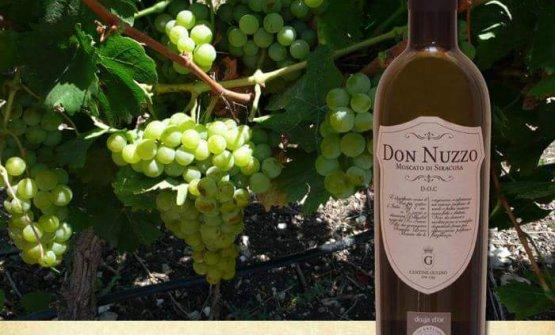 Don Nuzzo, vino delle Cantine Gulino
