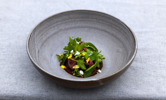 Oxtail and mole of dog rose (photo Jason Loucas)