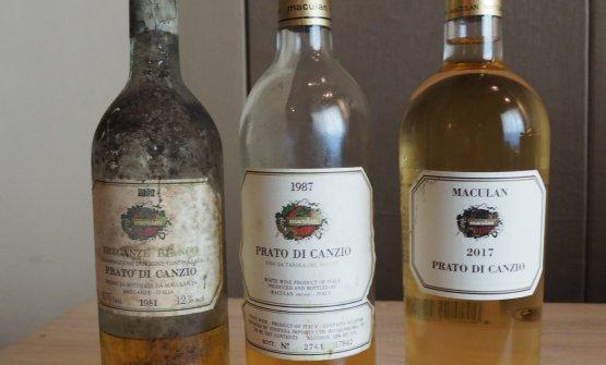 I tre Prato di Canzio degustati: il 1981, annata più vecchia rimasta in cantina; il 1987, a trent'anni di distanza dalla nuova edizione, e il