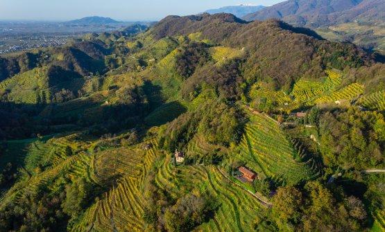 Viaggio sulle colline di Conegliano Valdobbiadene, un territorio candidato a diventare Patrimonio dell'Unesco