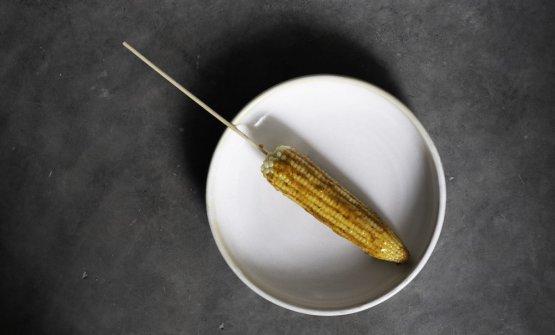 Pannocchia di mais con maionese di formica chicatana