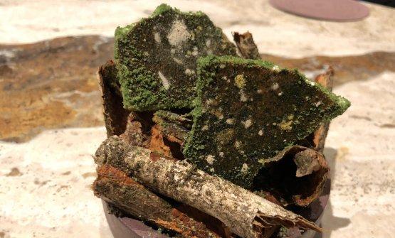 Piante medicinali (3580m): foglie di congona, gel di huampo e fiori di kjolle