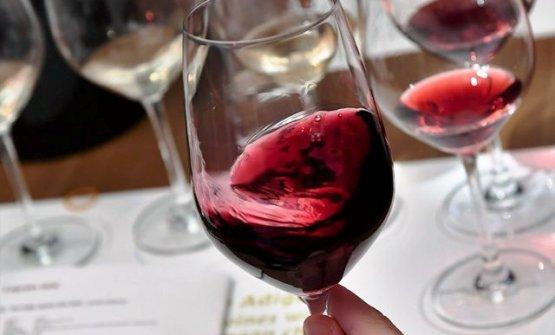 Il Pinot Nero in Alto Adige: tante sfaccettature p