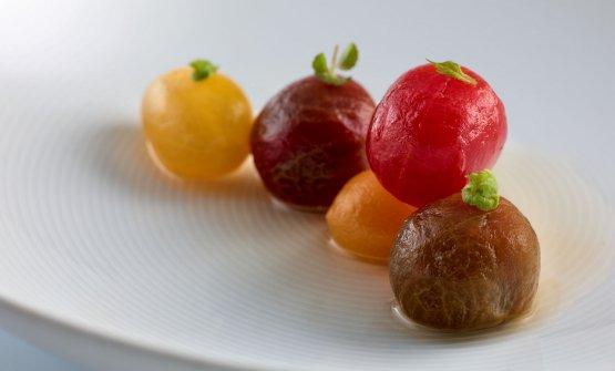 Tomates en salsa, hierbas aromáticas y fondo de a