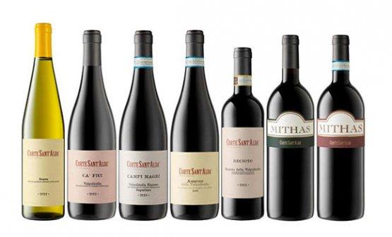 La gamma dei vini