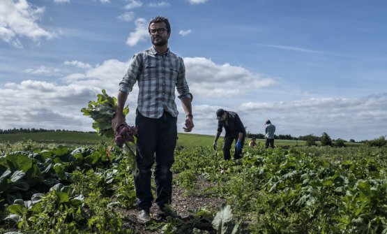 Christian Puglisi, socio di Perricone, nel campo della Farm of Ideas