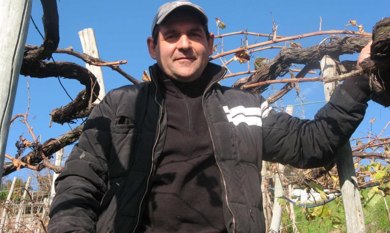 L'avventura nel mondo del vino di Raffaele Moccia inizia nella vigna costruita dal padre Gennaro nel 1960, all'interno dell'oasi naturale del Parco degli Astroni, dove continua a lavorare. Quasi quattro ettari, metà vitata a Piedirosso e metà a Falanghina, di terreno sabbioso nero, che conferisce a queste uve un sapore molto particolare