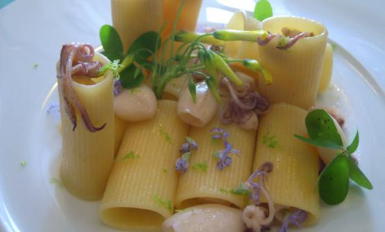 Rigatonicon calamaretti spillo, lime, lemon grass, e fiori di rosmarino: è la ricetta scelta per il 2017 da Gino Pesce, con la compagna Patrizia Ronca chef e patron del ristorante Acqua Pazza, sulla splendida isola di Ponza