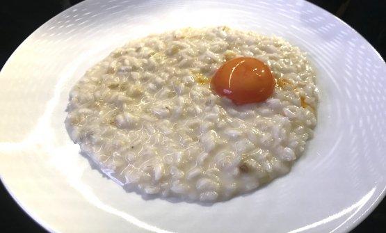 Il Risotto al cardo gobbo, taleggio, tuorlo e camonilla, chef Luciano Tona