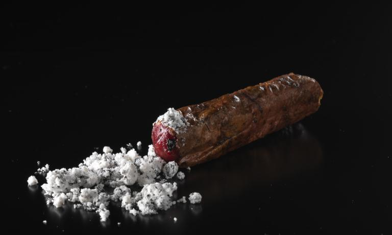 Uno splendido piatto di Enrico Bartolini, Rolls di piccione