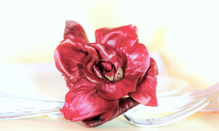 L'alta cucina adotta sempre più la Rosa di Gorizia, il radicchio più raro e prezioso del mondo. Ma c'è Rosa e Rosa, come raccontano i suoi produttori aIdentità Golose