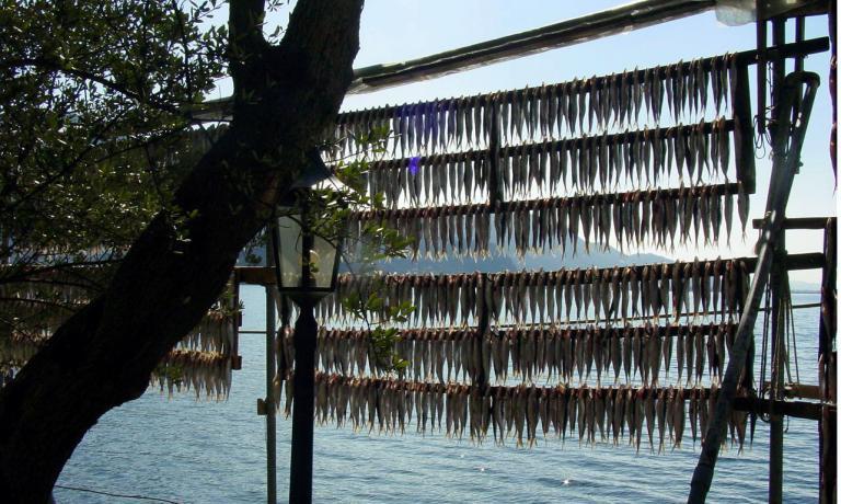 Sardina essiccata del Lago d'Iseo