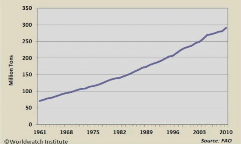The vertiginous increase in global meat consumption
