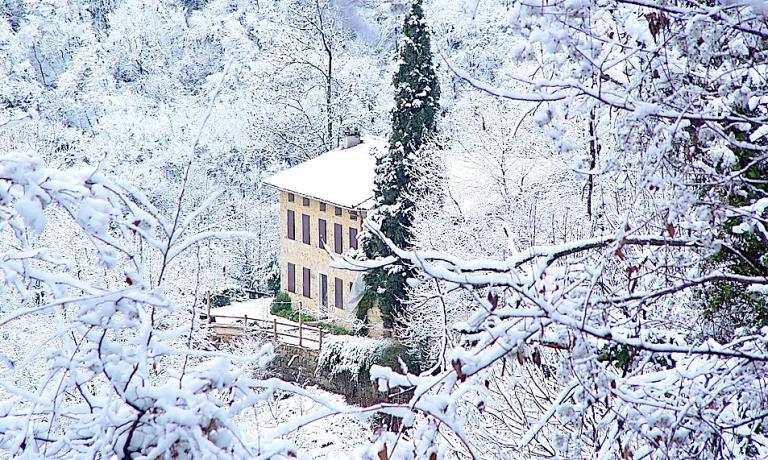 Spinechile d'inverno (no, la neve quest'anno ancora non c'è)