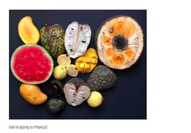 Dal 12 aprile al 28 maggio, Noma sarà un pop-up a Tulum, in Messico. Il menu degustazione? 750 dollari americani a testa