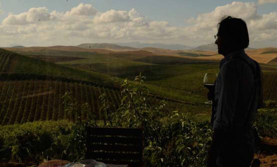 Francesco Spadafora nella tenuta dell'azienda agricola di famiglia, in contrada Virzì a Monreale (Palermo)