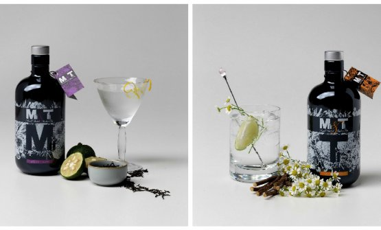 Mì Martini cocktail e Tì Gin tonic