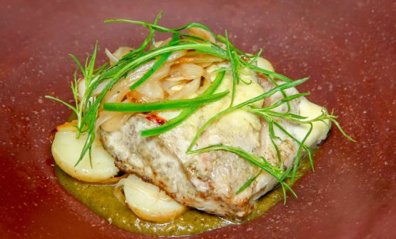 Turbot with potato confit and prickly pear sauce