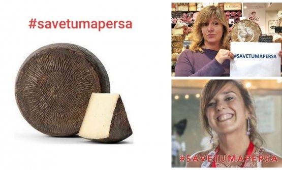 L'appello di Giacomo Gironi e quelli di Stefania Petrotta e Cristina Barbera