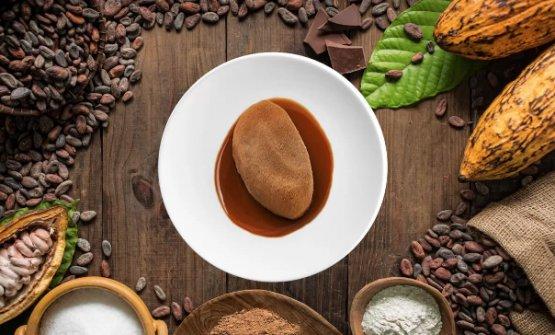 Haba de cacao