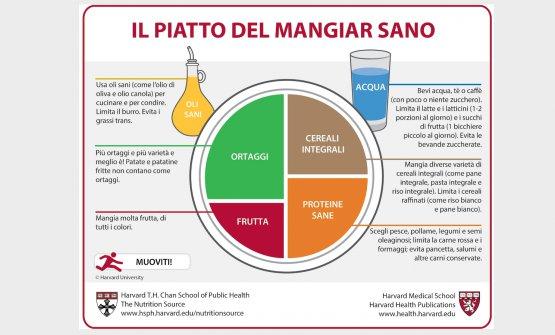 Lo schema dell'alimentazione corretta firmataHarvard Medical School
