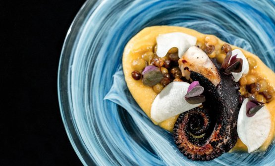 Octopus and beans, one of the dishes in the menu at Muyu
