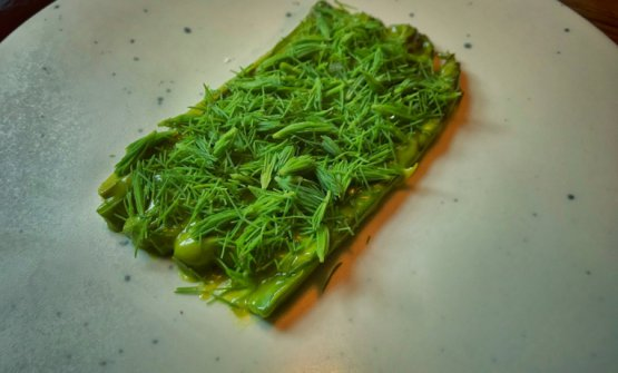 Asparagi, crema di pistacchio e gemme di pino, piatto di Nicola Fanetti, Brace, Copenhagen