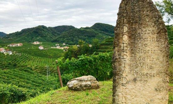 Conegliano Valdobbiadene: terra, uomini e Prosecco
