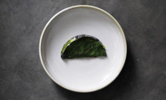 Taco di avocado con hoja santa